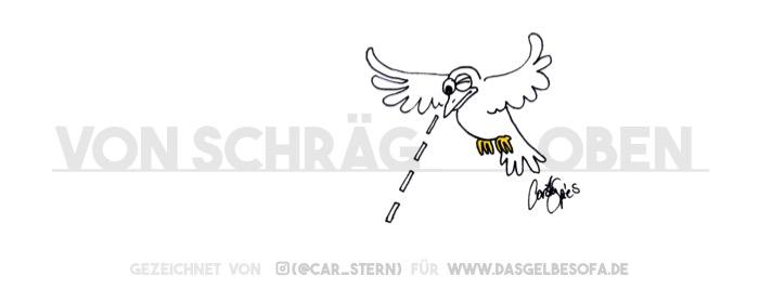 Ein Vogel visiert sein Ziel an – von schräg oben!